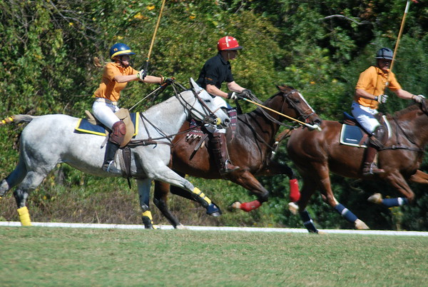 Chukkar Farm Polo - Polo for Parkinson's - October 16, 2011 281