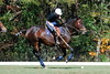 Chukkar Farm Polo - Polo for Parkinson's - October 16, 2011 279