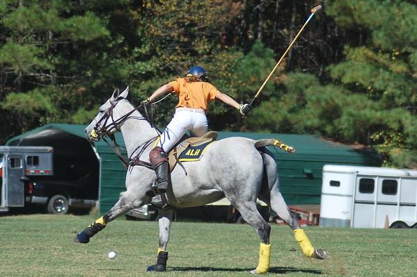 Chukkar Farm Polo - Polo for Parkinson's - October 16, 2011 246