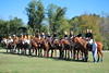 Chukkar Farm Polo - Polo for Parkinson's - October 16, 2011 140