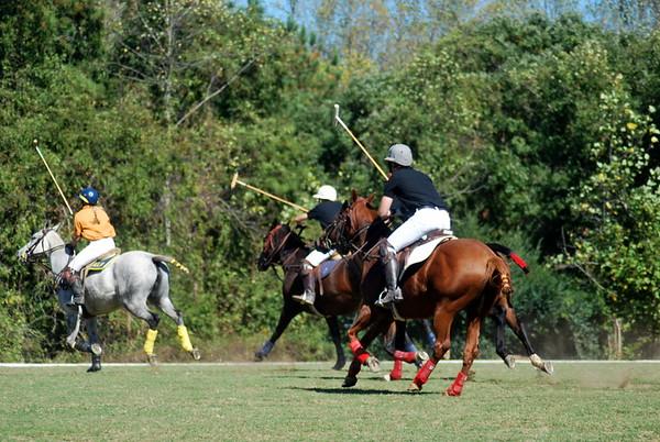 Chukkar Farm Polo - Polo for Parkinson's - October 16, 2011 258