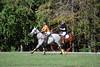 Chukkar Farm Polo - Polo for Parkinson's - October 16, 2011 427