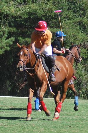 Chukkar Farm Polo - Polo for Parkinson's - October 16, 2011 324