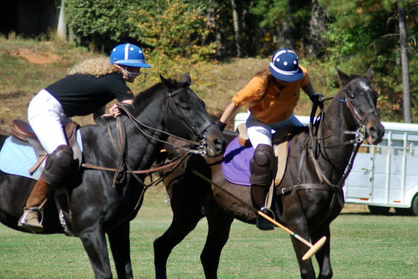 Chukkar Farm Polo - Polo for Parkinson's - October 16, 2011 299