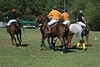 Chukkar Farm Polo - Polo for Parkinson's - October 16, 2011 210