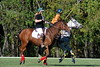 Chukkar Farm Polo - Polo for Parkinson's - October 16, 2011 430
