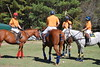 Chukkar Farm Polo - Polo for Parkinson's - October 16, 2011 091