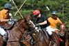 Chukkar Farm Polo - Polo for Parkinson's - October 16, 2011 214