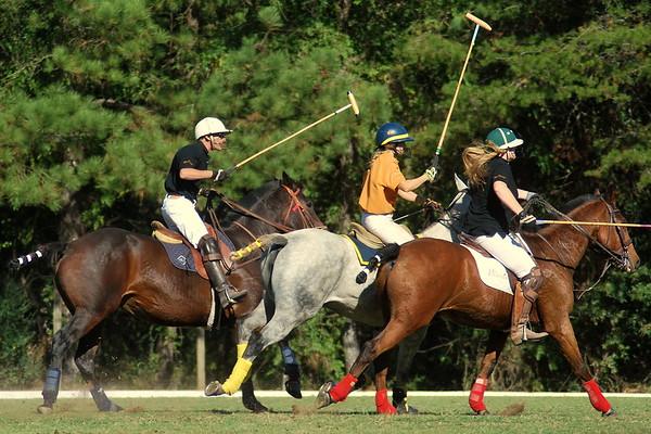 Chukkar Farm Polo - Polo for Parkinson's - October 16, 2011 433