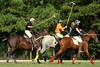 Chukkar Farm Polo - Polo for Parkinson's - October 16, 2011 433