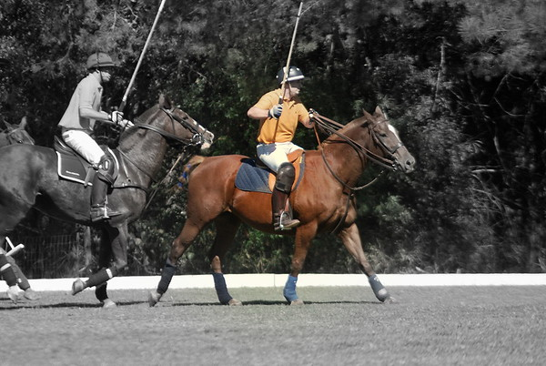 Chukkar Farm Polo - Polo for Parkinson's - October 16, 2011 280