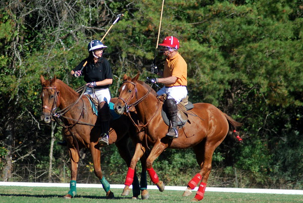 Chukkar Farm Polo - Polo for Parkinson's - October 16, 2011 423