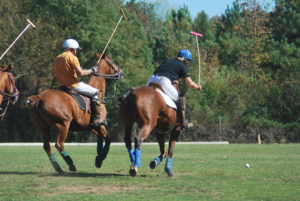 Chukkar Farm Polo - Polo for Parkinson's - October 16, 2011 311