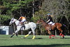 Chukkar Farm Polo - Polo for Parkinson's - October 16, 2011 428