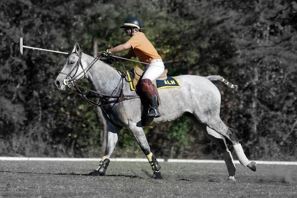 Chukkar Farm Polo - Polo for Parkinson's - October 16, 2011 458