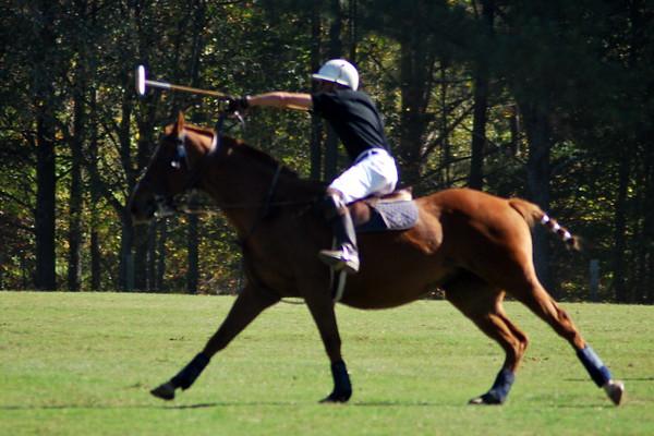 Chukkar Farm Polo - Polo for Parkinson's - October 16, 2011 357