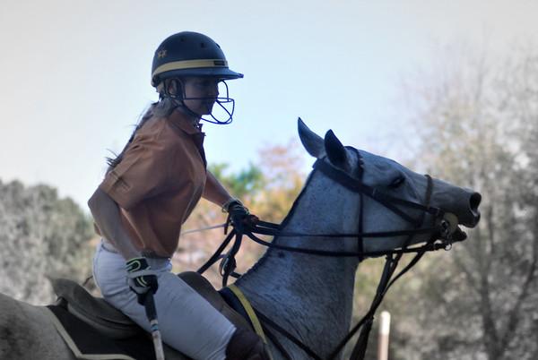 Chukkar Farm Polo - Polo for Parkinson's - October 16, 2011 252