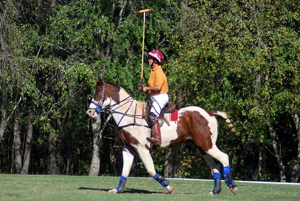 Chukkar Farm Polo - Polo for Parkinson's - October 16, 2011 407
