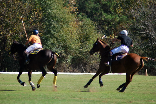 Chukkar Farm Polo - Polo for Parkinson's - October 16, 2011 358