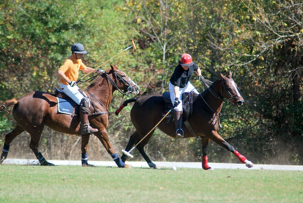 Chukkar Farm Polo - Polo for Parkinson's - October 16, 2011 262