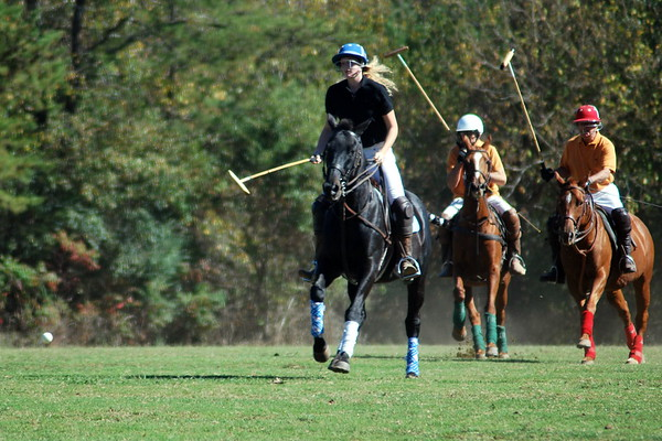 Chukkar Farm Polo - Polo for Parkinson's - October 16, 2011 321