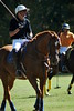 Chukkar Farm Polo - Polo for Parkinson's - October 16, 2011 361