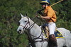 Chukkar Farm Polo - Polo for Parkinson's - October 16, 2011 286