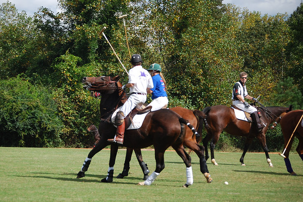 Polo for Parkinsons 274