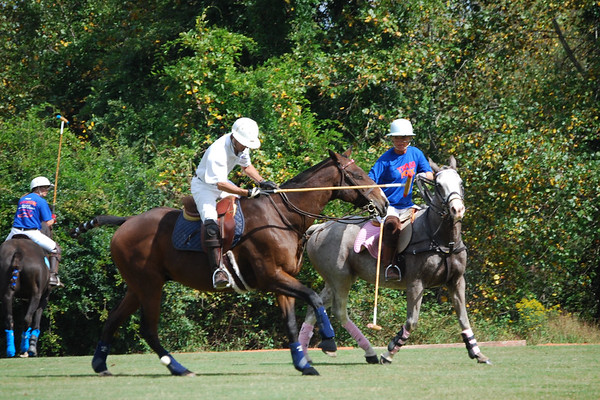 Polo for Parkinsons 279