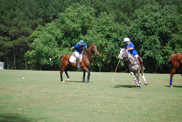 Polo for Parkinsons 257