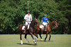 Polo for Parkinsons 272