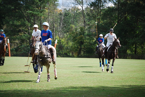 Polo for Parkinsons 261