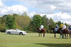 Polo for Parkinsons 251