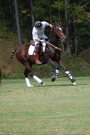 Polo for Parkinsons 284