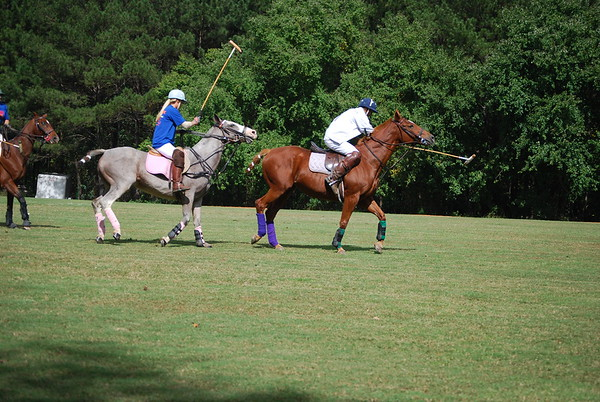 Polo for Parkinsons 256