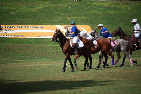 Polo for Parkinsons 258