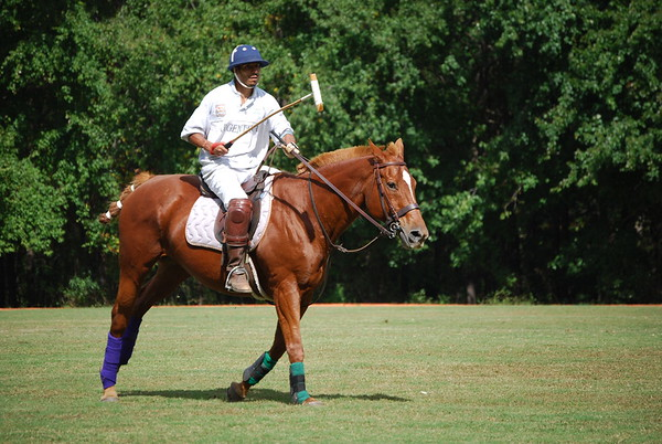 Polo for Parkinsons 271