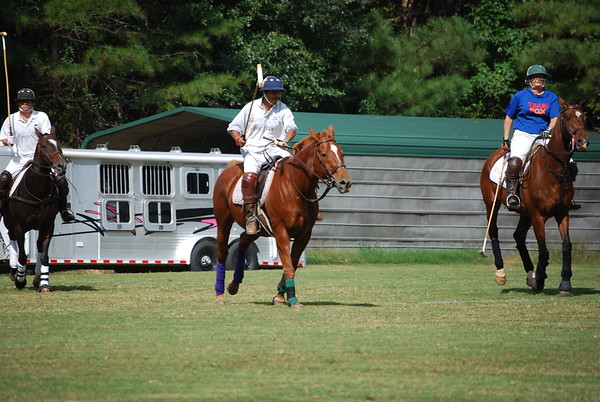Polo for Parkinsons 270