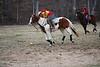 Polocrosse 2009 397