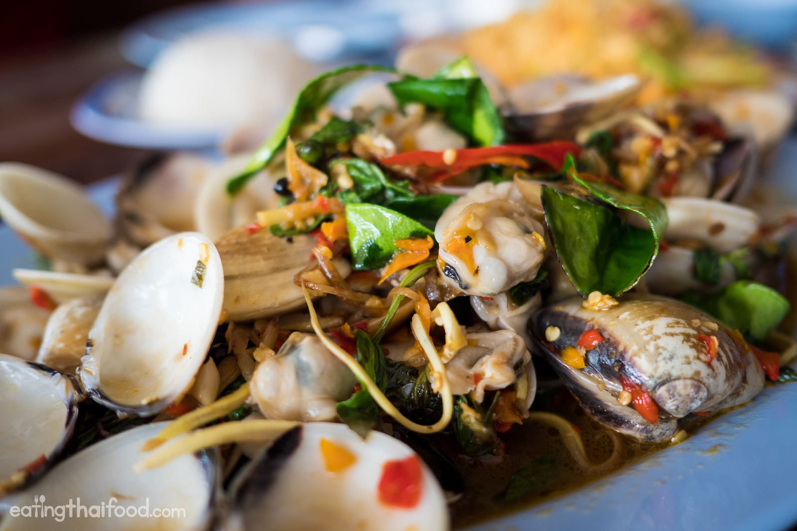 venus clams
