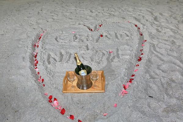 Chad & Nicole's Engagement