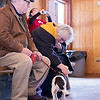 Carrie Garland — The News-Herald <br> Visitors pet one of the Chagrin Valley Beagles on Feb. 5 at Geauga Park District's Swine Creek Reservation in Middlefield Township.