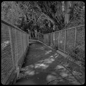Walkway above Carona Heights Playground.