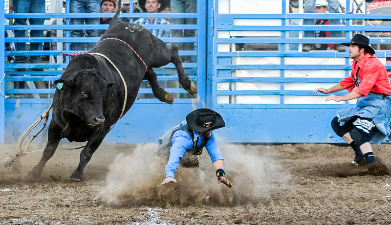 The bull eyes the rider while the rodeo clown comes in for diversion.
