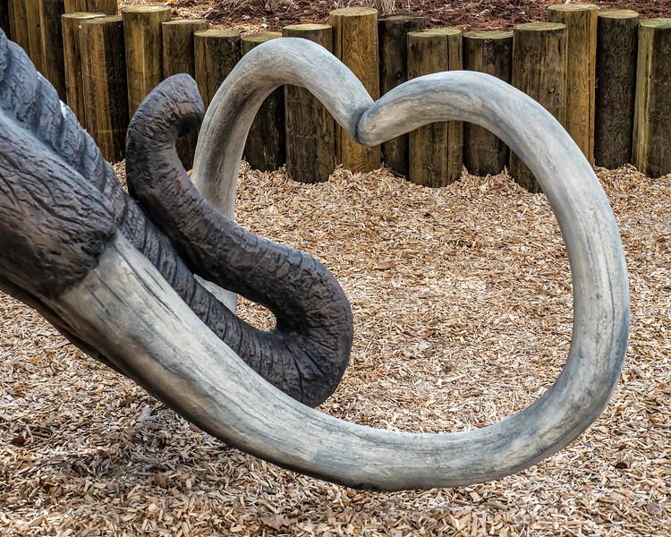 Elephant Curves