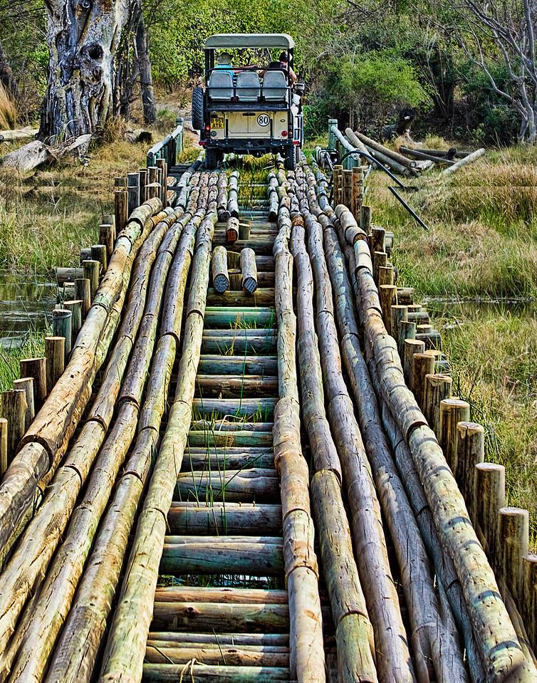 Bridge Over Troubled Waters (crocodiles)
