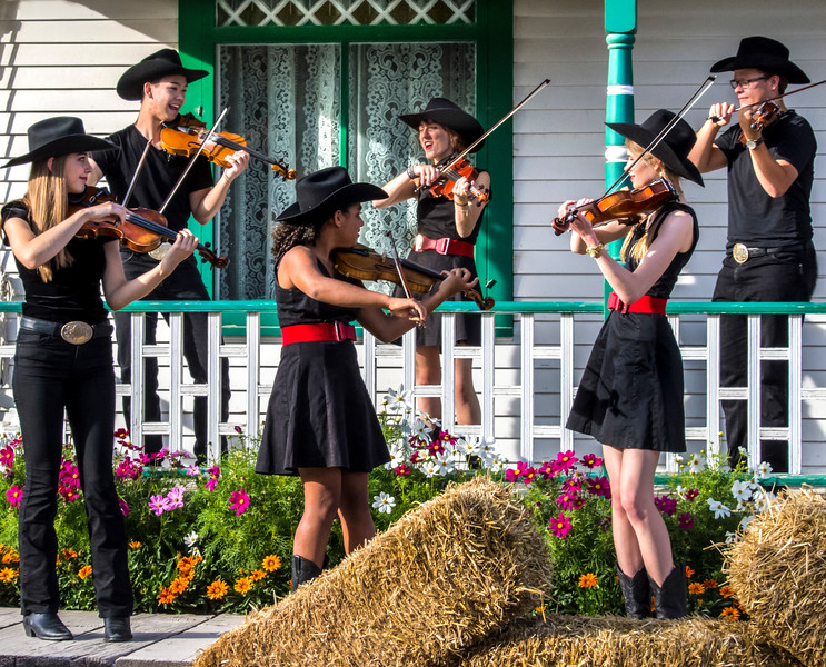 Fiddlers on the Porch