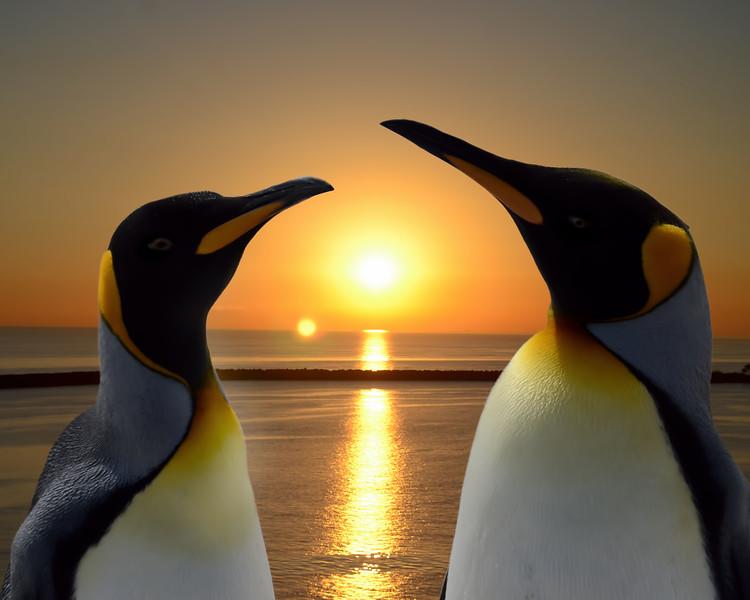 Nice Sunset...Huh?