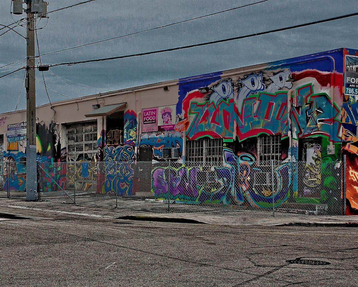 Wynwood  Artistic Urban Decay