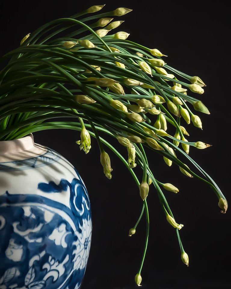 Chinese Leeks